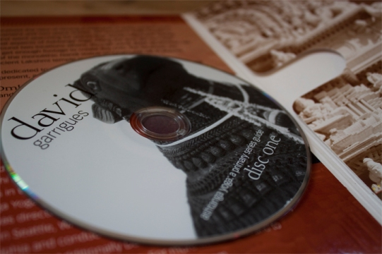 The disc design featuring Nandi, a sacred icon in Mysore, India, one of the DVD's filming locations.