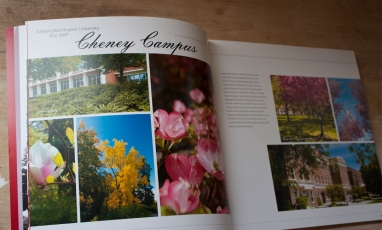 Photography was used as focus to accompany the minimal text throughout the book.
